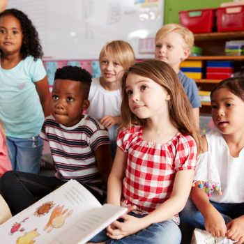 Which curriculum is best for preschool?